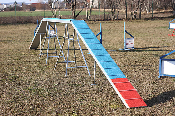 Jumps Have A Good Stability And We Use Slightly Flexible Plastic Bars That Are Practically Impossible To Be Broken Their Flexibility Protects Dogs In Case